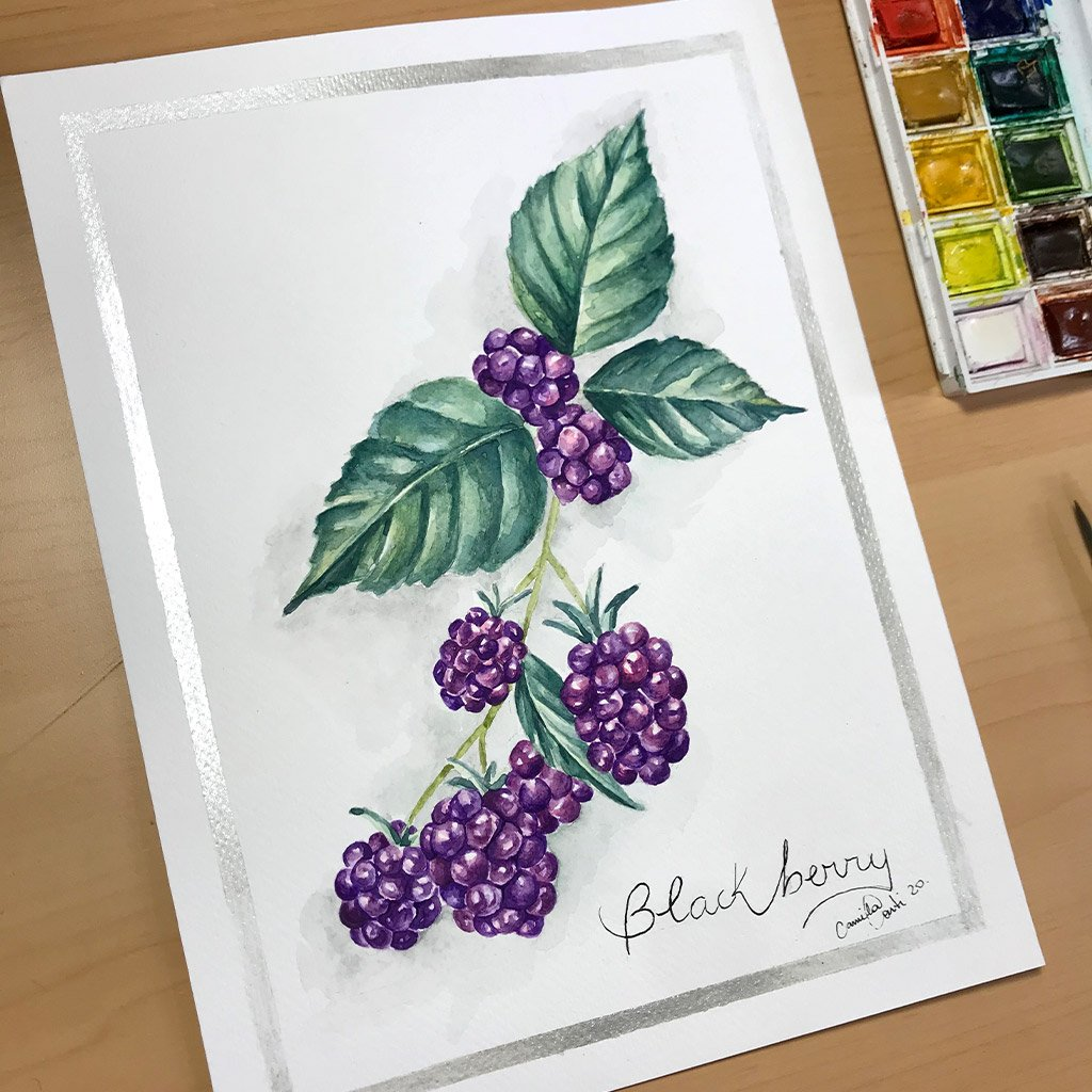 Tattoo Flashes Fruit Collection - Blackberry - 18x24cm - Paper 300g