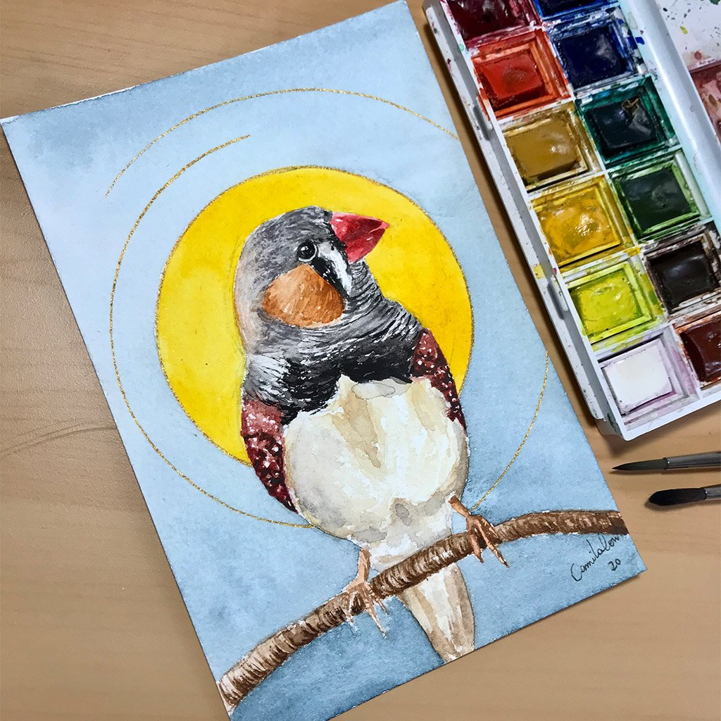 Birds of Ireland Collection - Finches - 10x15cm (postcard) - Paper 300g