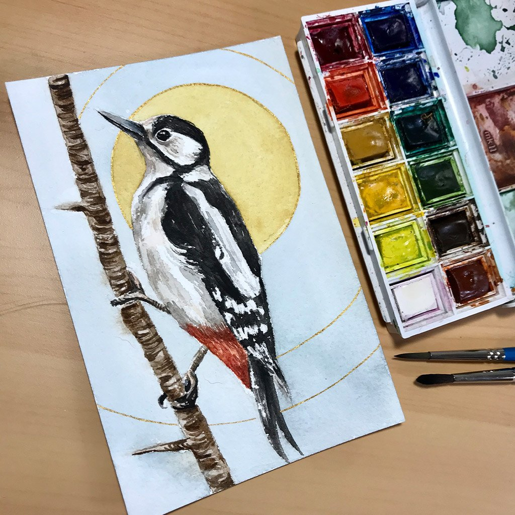 Birds of Ireland Collection - Great Spotted Woodpecker - 10x15cm (postcard) - Paper 300g